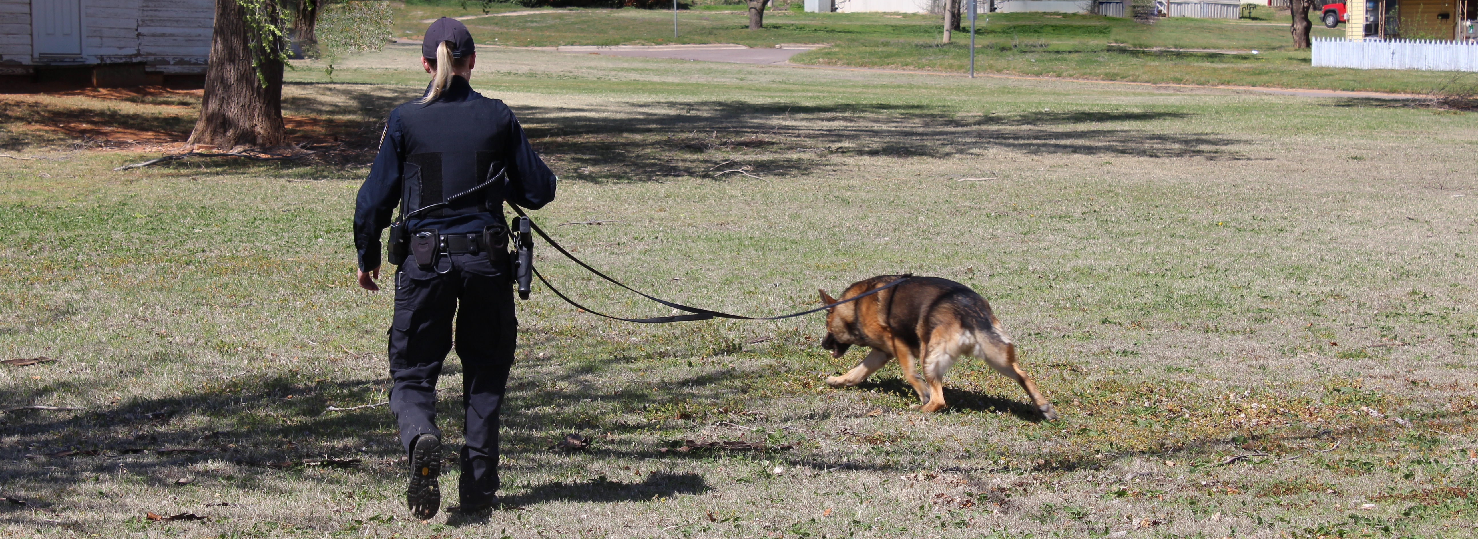 police officer training one of the drug dogs